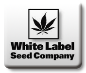 White Label (Sensi)